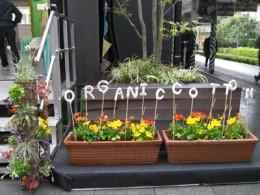 2010年5月 オーガニックコットンのアバンティさんの仕事をさせていただいたことがきっかけで依頼していただいたイベント装飾の仕事。TBSのある赤坂サカスで行われまし  ...
