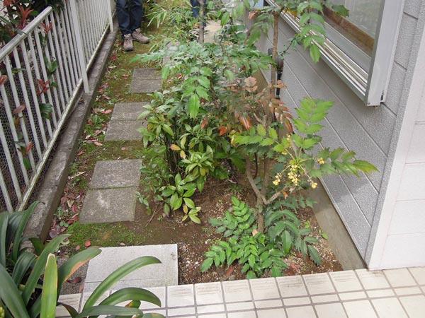shiraishi02b.jpg